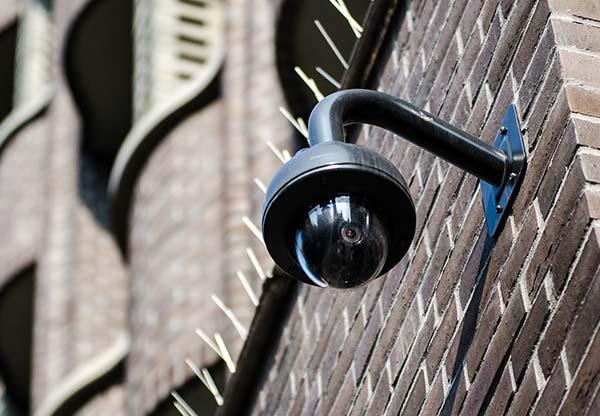 Network CCTV Cameras